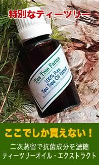 ティーツリーオイル・エクストラクト(二次蒸留濃縮オイル)